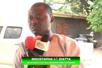 AGRICULTURE: L'état vient en appui aux producteurs de Ziguinchor