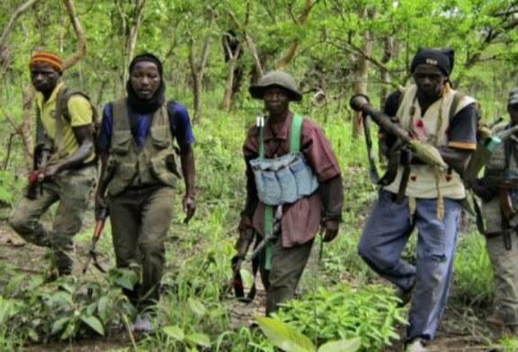CASAMANCE : Treize personnes tuées par des rebelles dans la forêt de Bofa