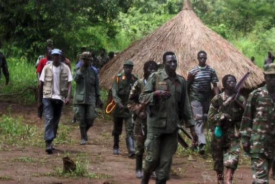 Le MFDC, la couverture de tous les malfaiteurs en Casamance