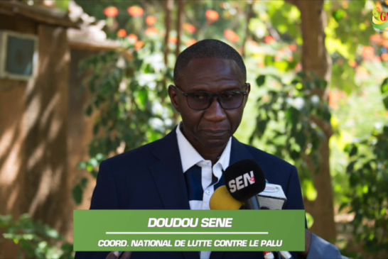 DAKAR: Le PNLP tire le bilan du paludisme au Sénégal