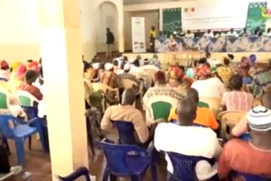 ZIGUINCHOR: Les artisans locaux gonflés à bloc par le dg de l'APDA, pour l'émergence du Sénégal