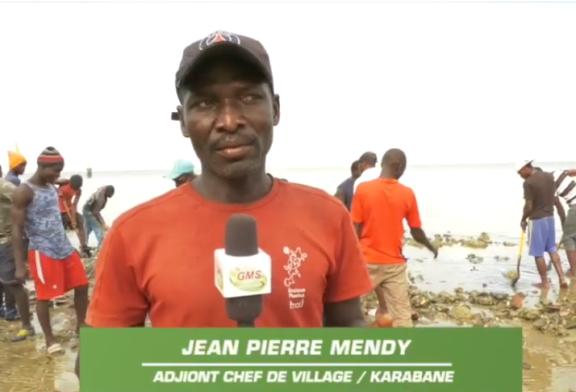 ÉROSION CÔTIÈRE: L'île Carabane augmente son espérance de vie par construction d'une digue de protection