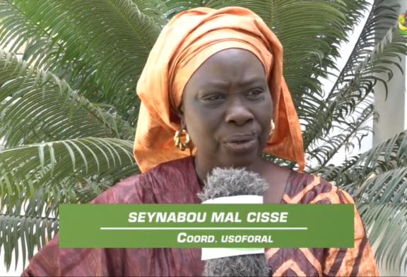 RÉVOLUTION DANS L'AGRICULTURE : le « PARIIS » suscite l'espoir chez les femmes rurales de Ziguinchor