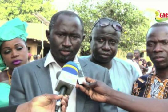 Bignona : La coupe de bois dévaste les forêts de la frontière avec la Gambie
