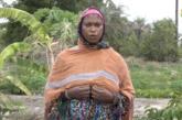 ZIGUINCHOR: Le jardin transfrontalier de Trankil; cas d'école pour une culture de paix et de sécurité entre la Gambie et le Sénégal