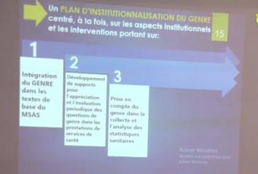 BIGNONA: L'institutionnalisation du genre discutée au cours d'un atelier