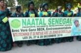 BIGNONA : Le parti écologie NAATAL Sénégal fête son 1er anniversaire et décline ses orientations